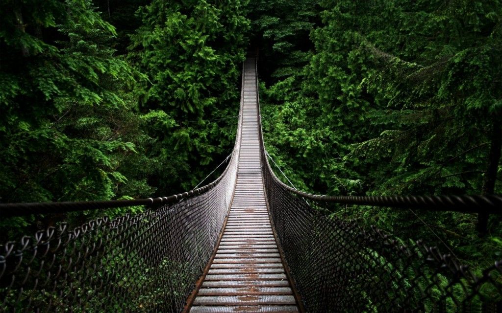 Suspension Bridge wallpapers HD