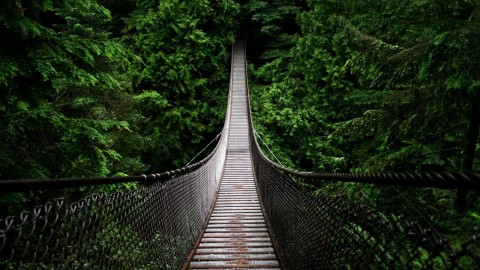 Suspension Bridge wallpapers high quality