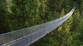 Suspension Bridge Desktop Wallpaper For PC