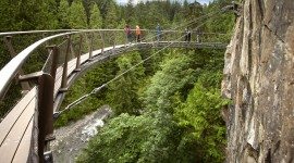 Suspension Bridge Photo Download