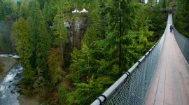 Suspension Bridge Photo Download#1