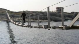 Suspension Bridge Photo Free