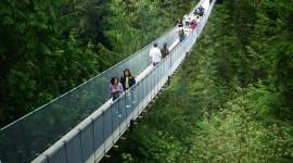 Suspension Bridge Wallpaper For IPhone