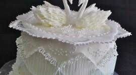Swan Cake Wallpaper Free