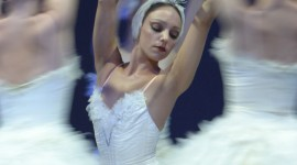 Swan Lake Wallpaper For Android#1