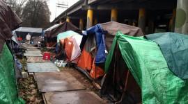 Tent Town Wallpaper Download Free