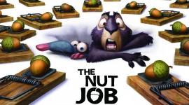 The Nut Job Wallpaper Gallery