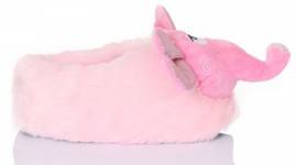 Unusual Slippers Photo Download
