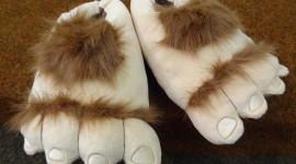 Unusual Slippers Photo#1