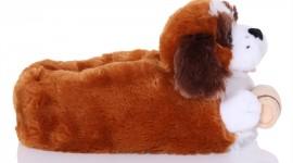 Unusual Slippers Photo#2