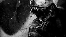 Venom Wallpaper Gallery