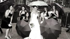 Wedding In The Rain Best Wallpaper