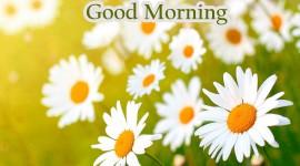4K Good Morning Wallpaper For PC