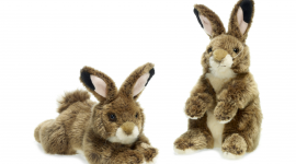 4K Toy Hare Photo