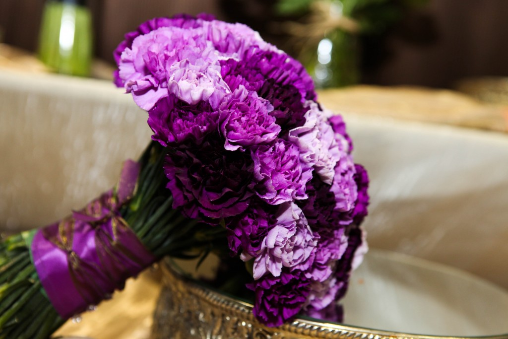 Carnation Purple wallpapers HD