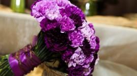 Carnation Purple Wallpaper 1080p
