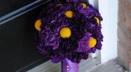 Carnation Purple Wallpaper Background