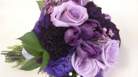 Carnation Purple Wallpaper Full HD