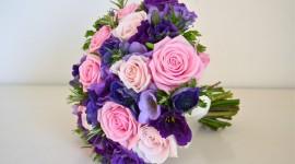 Carnation Purple Wallpaper HQ