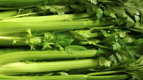Celery wallpapers high quality