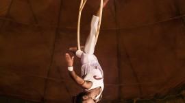 Circus Gymnastics Photo