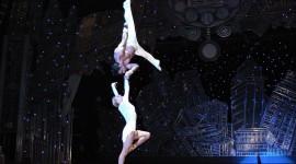 Circus Gymnastics Photo Free