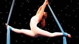 Circus Gymnastics Wallpaper Free