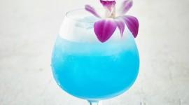 Cocktail Blue Hawaii Wallpaper HQ