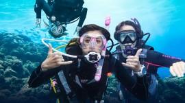 Diving Wallpaper Background