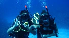 Diving Wallpaper Download