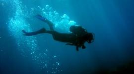 Diving Wallpaper Download Free