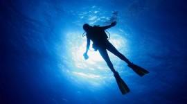 Diving Wallpaper Free