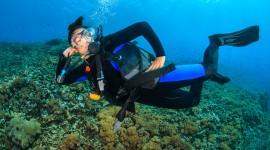 Diving Wallpaper HD