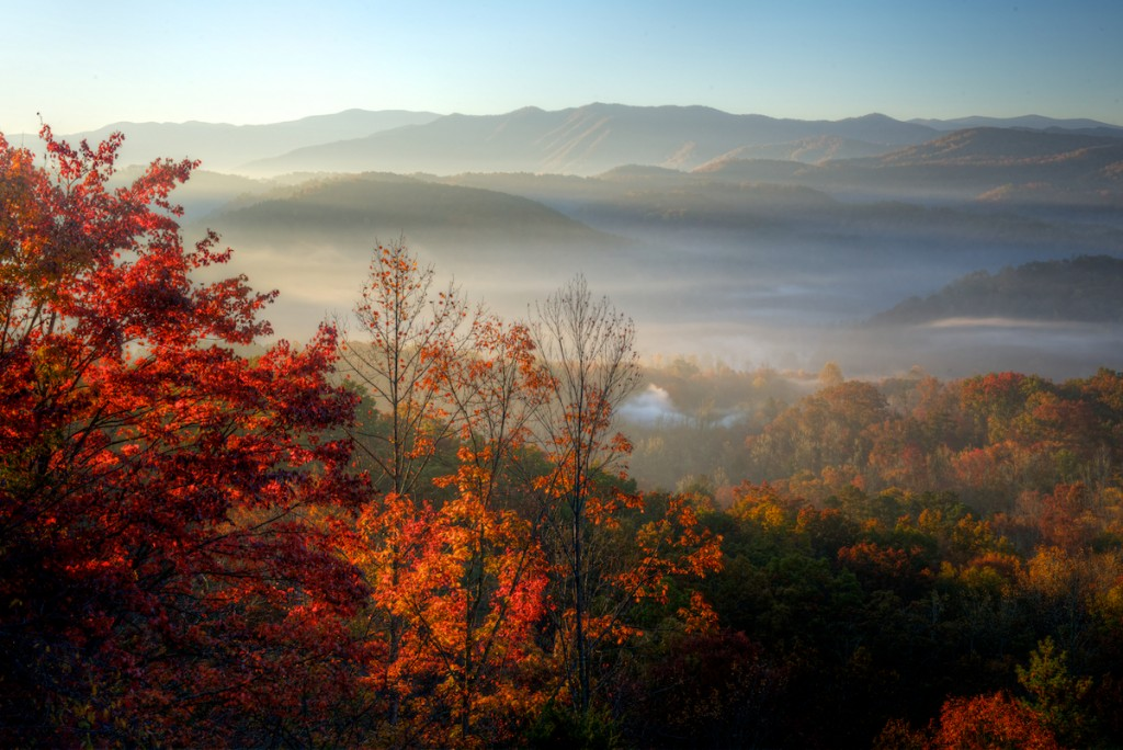 Fog In Smoky Mountains wallpapers HD