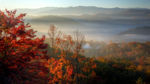 Fog In Smoky Mountains wallpapers high quality
