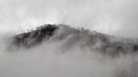 Fog In Smoky Mountains Photo