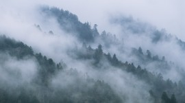 Fog In Smoky Mountains Wallpaper Free