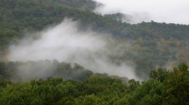 Fog In Smoky Mountains Wallpaper#2