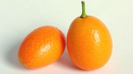 Kumquat Wallpaper Gallery