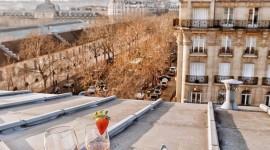 Morning In Paris Wallpaper For IPhone#3