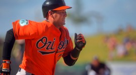 Orioles Wallpaper Download