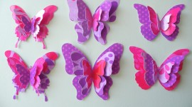 Paper Butterflies Photo