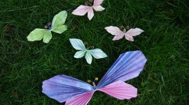 Paper Butterflies Photo Download