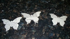 Paper Butterflies Photo#2