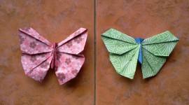 Paper Butterflies Pics