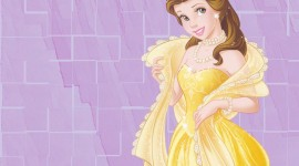 Princess Belle Aircraft Picture