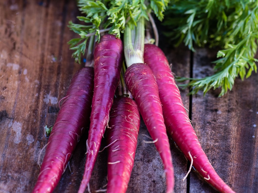 Purple Carrot wallpapers HD