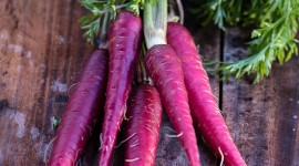 Purple Carrot High Quality Wallpaper