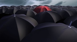 Red Umbrellas High Quality Wallpaper