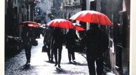 Red Umbrellas Wallpaper For PC